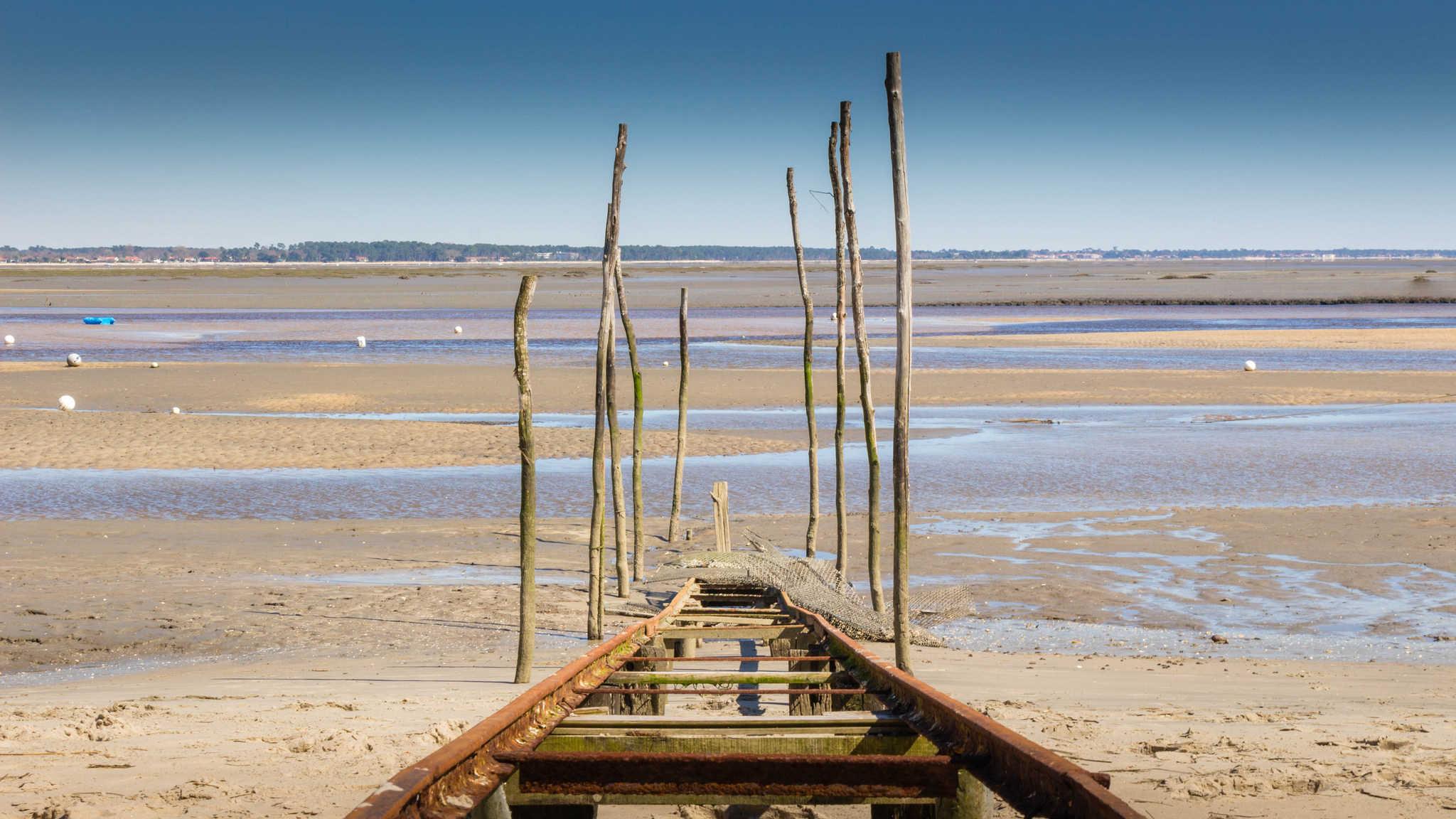 arcachon huitre plage