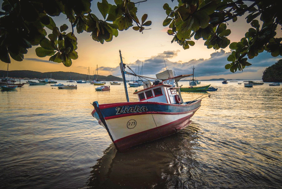 boat-mouillage-sharemysea