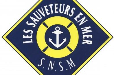 logo__snsm_600_dpi