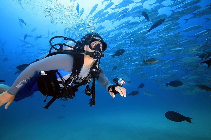 plongée-équipement-du-plongeur
